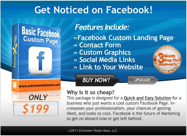 Basic Facebook Web Design Packages Price