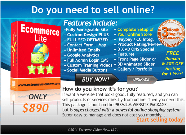 E-Commerce Web Design Packages Lite Price Cost