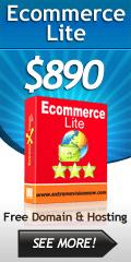 Ecommerce Web Design Packages Lite