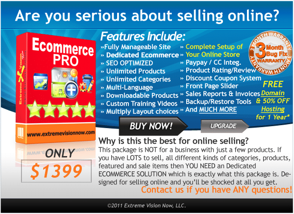 E-Commerce Web Design Packages Professional - Price