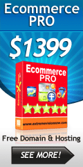 E-Commerce Web Design Packages Professional